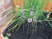Stainless Steel Herb Markers or Plant markers