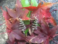 Tree Earrings stainless steel on acer leaves